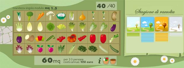 Le verdure del mio orto