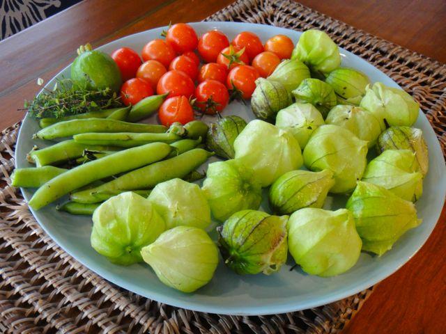 Todays Harvest